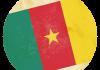 Selección de fútbol de Camerún - Bandera - Mundial 2014 Brasil - FÚTBOLSELECCIÓN